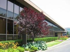US Executive Center LLC, Englewood Cliffs - 07632